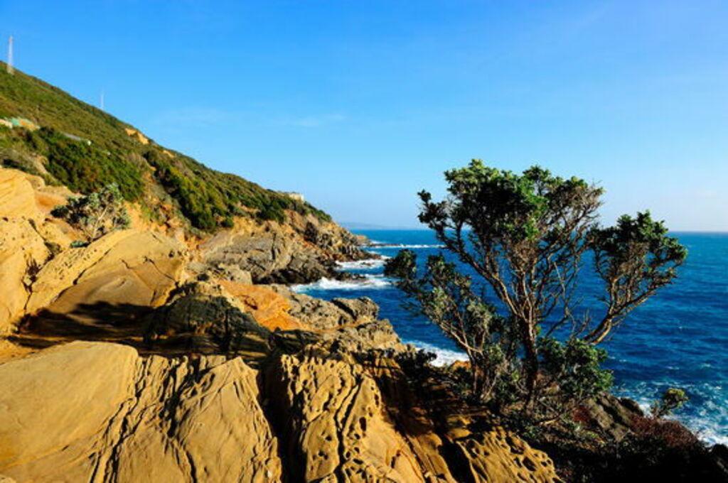 Etruské pobřeží
