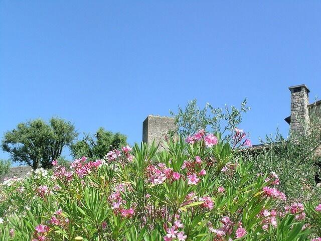 Monteriggioni Spring