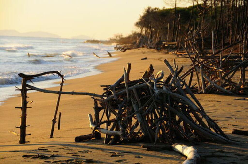 Toskánsko pláž léto