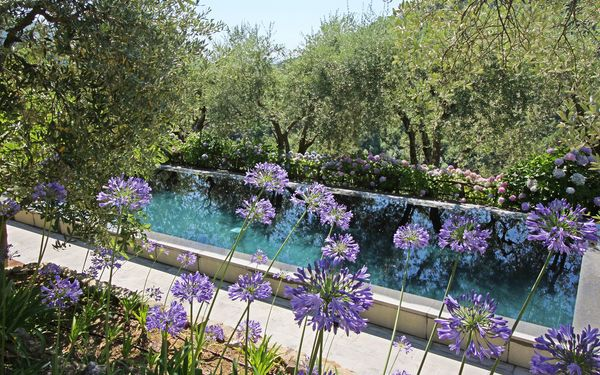 Macennere, Villa for rent in Lucca, Tuscany