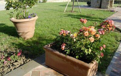 Nr.2: giardino