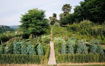 Borgo Toscano: Vegetable garden