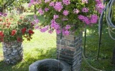 Villa Celeste: particolare del giardino: il tuo amico a quattro zampe può dissetarsi!