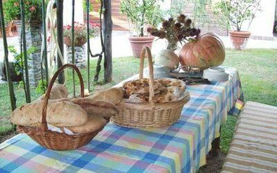 Villa Celeste: il pane e la focaccia fatti nel nostro forno a legna poco distante stanno aspettandoti