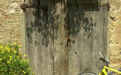 Fattoria Le Poggiola: old door