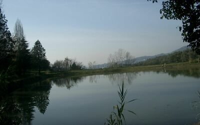 Fattoria Le Poggiola: view from our lake