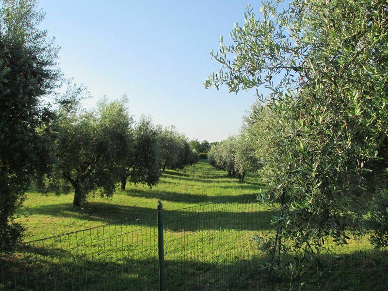 Agriturismo La Pieve