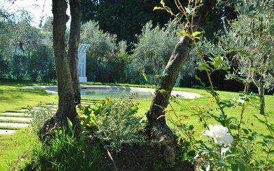 Montecuccoli