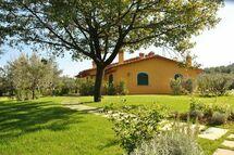 Apartment Montecuccoli in  Montelupo Fiorentino -Toskana
