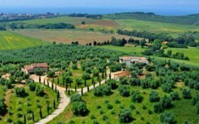 Villa Giulia Follonica: aerial view