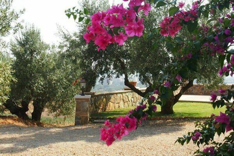 Villa Giulia Follonica