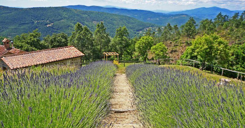 Farmhouse Il Corso