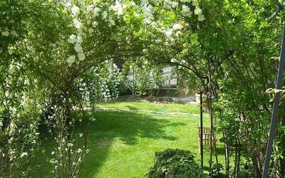 Torre Tavarnelle: May roses in the garden