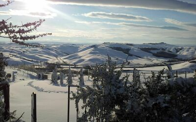 Il Nido Di Giulia: Julia's cottage overlooking the Hills with snow