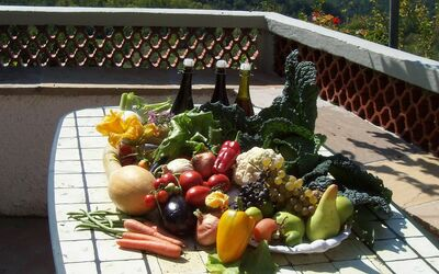 Casa Donati: .Vegetables free , from our kitchengarden.