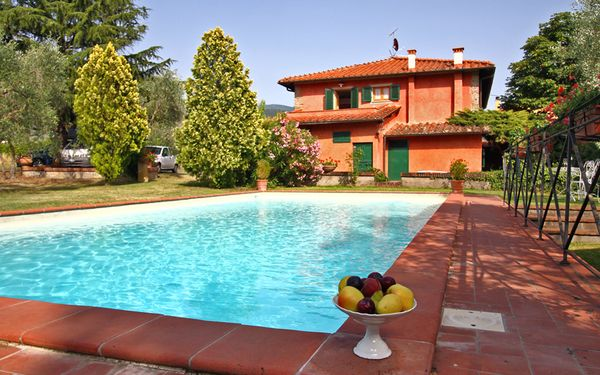 Villa Acacia, Villa for rent in Ostina, Tuscany