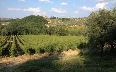 Monte San Michele a Polvereto