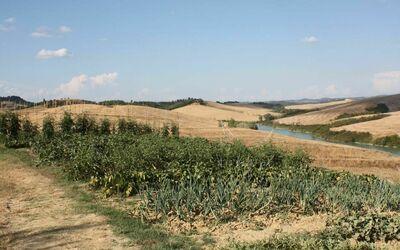 Agriturismo Il Gattero