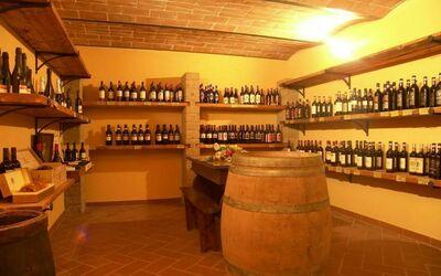 Agriturismo Il Gattero: the wine-cellar