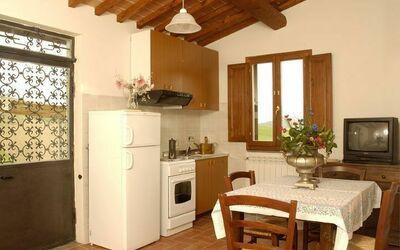 Cottage - Rosa