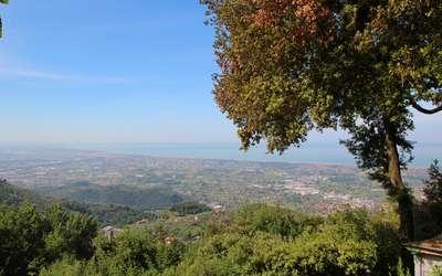 Il Leccio: Tuscany