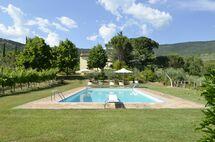 Villa Villa San Pietro in affitto a Cegliolo