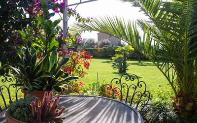 Villa Pergolone: pets allowed