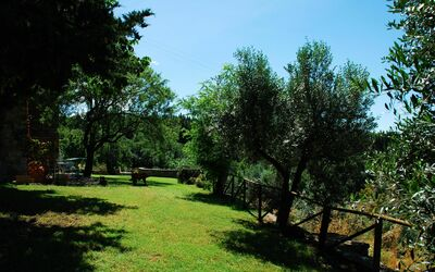 Le Querciole Del Chianti Countryhouse: Garden area