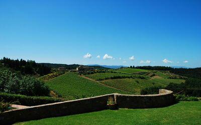 Le Querciole Del Chianti Countryhouse: Panorama