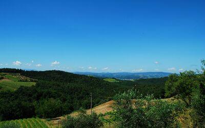 Le Querciole Del Chianti Countryhouse: Overall surrounding area