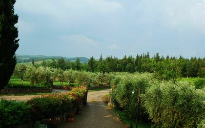 Le Querciole Del Chianti Countryhouse: External view