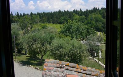 Le Querciole Del Chianti Countryhouse: From a window