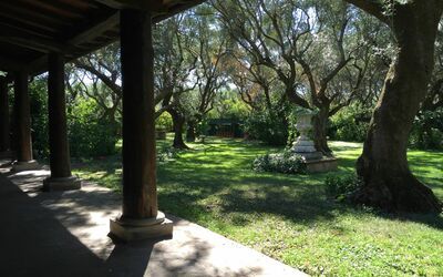 Villa Maria Doria: Portico in the Olive Grove