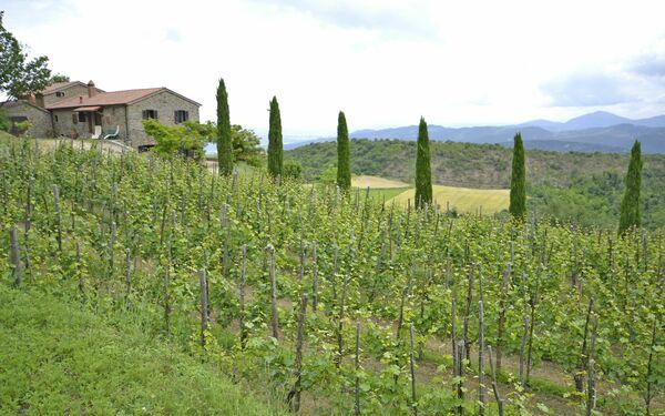 Villa Clara, Villa for rent in Poggioni, Tuscany