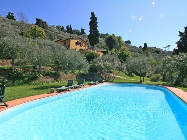 Villa Il Frantoio in affitto a Mommio Castello