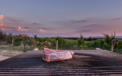 Villa Casanova: In the villa there is a big BBQ