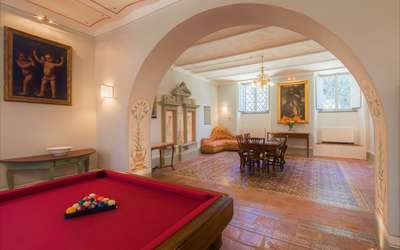 Villa Ivana: Billiard table