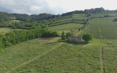 Podere Greve (Chianti): View of Podere Greve before the 2017 restructuring