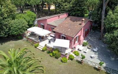 Villa Rosa: Villa for Rent in Forte dei Marmi