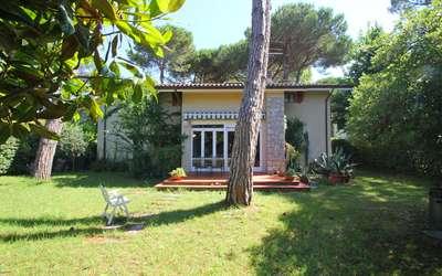 Ai Cerri: Gartenblick vom Ferienhaus in der nähe von Forte dei Marmi