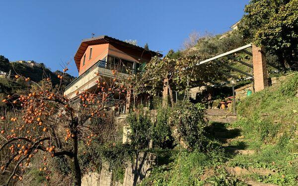 Villa Vigna, Villa for rent in Montignoso, Tuscany