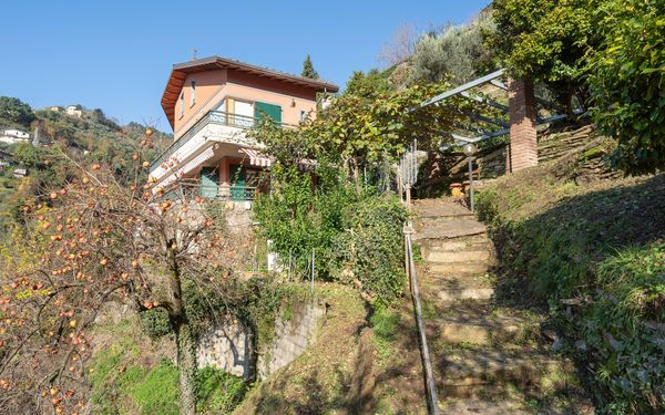 Villa Vigna, Villa for rent in Montignoso, Tuscany