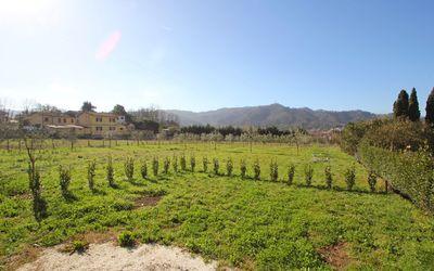 Casa Del Borgo: Camaiore