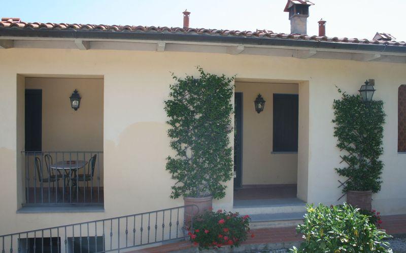 8 Salvia (2pax)