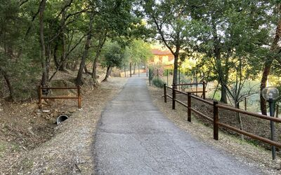 Villa Arianna - Tuscany Views: Private Access Road