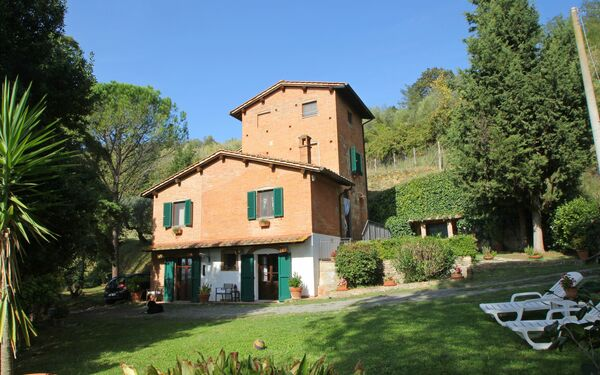 Podere Torre Degli Olivi, Country House for rent in Palaia, Tuscany