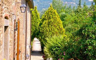 Cortona Holiday