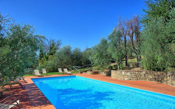 Apartment La Selva in  Camaioni -Toskana