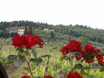 Villa Luigi, Тоскана, Rignano Sull'arno
