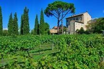 Villa Giovi, Villa for rent in Arezzo, Tuscany